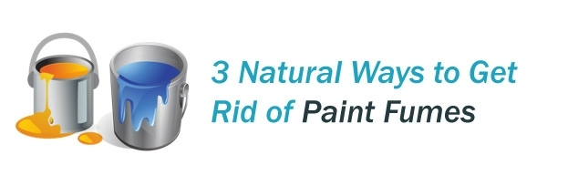 3 Natural ways to get rid of paint fumes
