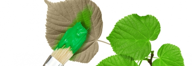 Non Toxic Paint Guide - How to Choose an Eco-Friendly Paint